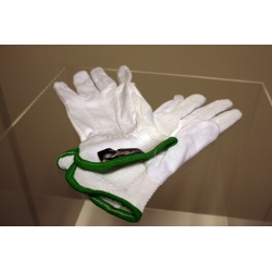 Beschermkap / vitrine handschoenen