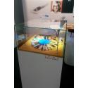 glazen vitrinekap, 45 x 45 x 45 cm (lxbxh), 6mm glas