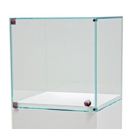 vitrine display met deur, 45 x 45 x 50 cm (lxbxh)
