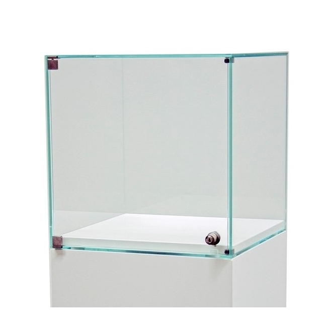 glazen vitrinekap met deur, op maat