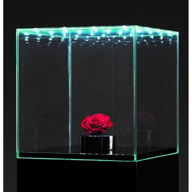 glazen beschermkap met geintegreerde led verlichting